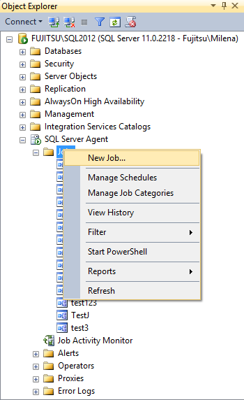 Scheduling the execution of the batch using SQL Server jobs