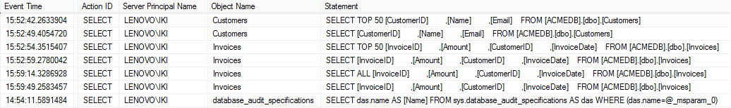 SQL Server Audit feature - Information about the SELECT statements issued on the particular database