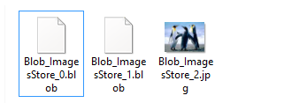Converting BLOB file to image file by renaming *.blob extension to *.jpg