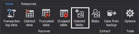 Choosing the Recover deleted BLOBs option
