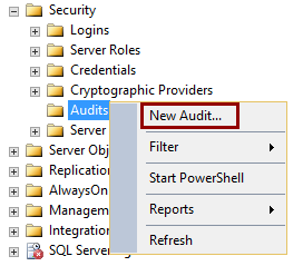 Selecting the New Audit option