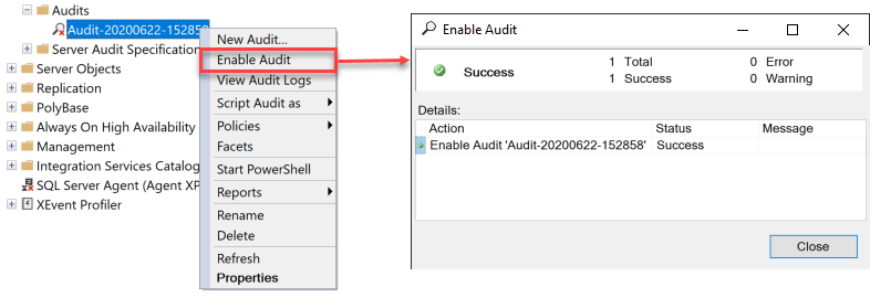 Enable Audit dialog